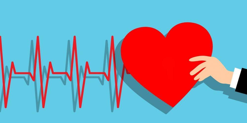 heartbeat, heart, hand